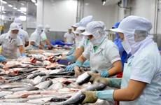 坚江省加强市场对接 助力促进进出口活动