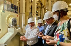 越欧自贸协定:越南向欧盟出口126吨香米