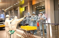 在日本的220余名越南公民安全回国