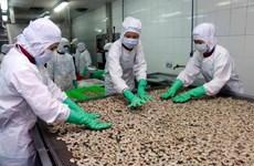 8月份虾类对欧盟出口额创年初以来最高增长率
