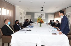 东南亚各国驻南非大使高度评价越南的作用