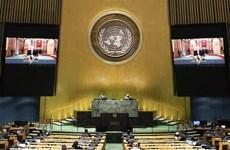 越南与联合国安理会:越南一向重视并希望加强与联合国之间的全面合作关系