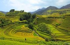 越南清化省梦幻秘境——浦良自然保护区