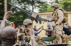 越南与联合国安理会:越南支持联合国和非盟在促进非洲和平所做出的努力