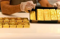 10月1日上午越南国内黄金价在5560万越盾左右