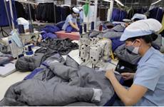 EVFTA: 充分利用优惠待遇 加大对欧盟市场的出口力度