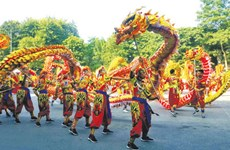 2020年河内舞龙艺术节将于10月3日开幕