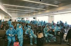 新冠肺炎疫情:将在日本的220名越南公民接回国