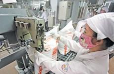 越南甘蔗制糖企业在困境中寻找机遇