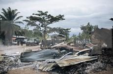越南强调了解决刚果冲突问题的对话与和解的重要性