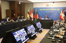 东盟联合磋商会和东盟协调委员会工作组第十次会议以视频方式召开