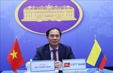 第5次越南与克伦比亚外交部副部长级政治磋商以视频形式进行