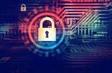 东盟与印度加强网络空间中的合作
