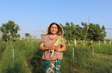 授予妇女经济权能,促进农业可持续发展