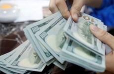 10月15日越盾对美元汇率中间价上调5越盾