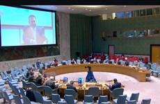 越南与联合国安理会:越南呼吁有关各方尊重有关西撒哈拉问题的各项协议