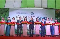 2020年越南艺术摄影大赛结果出炉