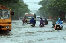 越南多地密切关注暴雨洪水情况  全力开展灾后重建工作