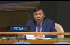 越南承诺为联合国特别政治和非殖民化委员会维和行动做出积极主动且负责任的贡献
