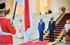 印尼与日本一致同意加强多个领域的合作