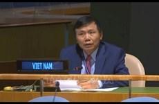 越南承诺为加强国家和国际层面的法治作出贡献