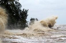 第八号台风距离黄沙群岛190公里 向广平、广治沿海地区移动