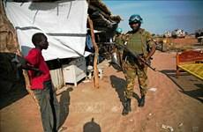 越南与联合国安理会:越南与印度尼西亚呼吁和平解决阿布耶伊问题