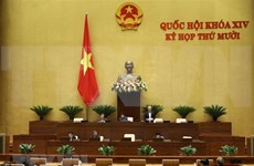 越南第十四届国会第十次会议:增加对艾滋病防治工作的国内资源