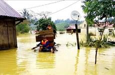 各国际组织为越南中部受灾群众撑起爱心伞