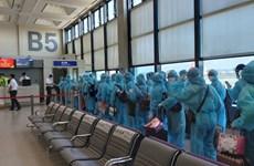 将在中国台湾的近230名越南公民接回国
