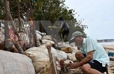越南成立应对第9号台风前方指导委员会