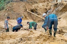 广南省南茶媚县泥石流事故:21人幸运脱险