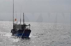 继续开展在海上失踪的平定省26名渔民的搜救工作