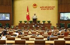 越南第十四届国会第十次会议:第二阶段的第一周将深入讨论经济社会问题并开展质询和询问活动