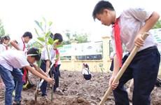 越南胡志明市致力让所有儿童都能生活在绿色清洁安全环境中