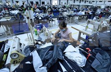 清化省将东北亚视为核心和战略的出口市场