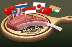 印度尼西亚增加对伊斯兰会议组织成员国的出口