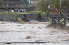 """菲律宾总统杜特尔特视察台风""""天鹅""""灾区"""