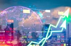 美国大选即将落定 越南股市今日满盘飘绿