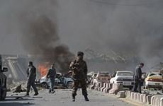 范平明就阿富汗喀布尔大学遭袭事件向阿富汗代外长致慰问电