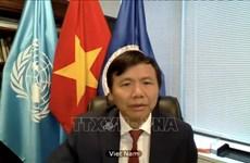 越南与联合国安理会:越南再次强调对联合国维和行动的支持