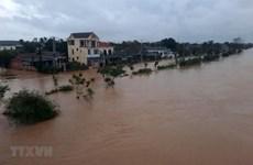 澳大利亚和瑞士政府向越南中部洪灾灾民提供人道主义援助
