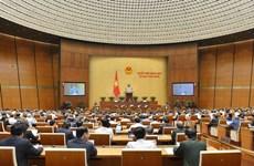 第十四届国会第十次会议:今日开展询问和质询活动