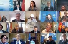 越南和联合国安理会:越南强调全面落实《禁止化学武器公约》的重要性