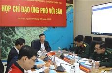 越南各部委和地方政府主动应对台风轮番来袭局势
