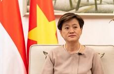 新加坡驻越大使:民众对2020年底签署RCEP充满期待
