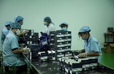 与众不同的产品助力胡志明市企业推动出口