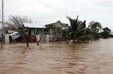 越南各地主动应对第13号台风