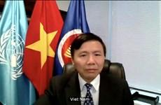 越南和联合国安理会:越南呼吁也门有关各方执行停火协议