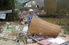 加拿大政府为越南中部地区洪灾灾民提供人道主义援助